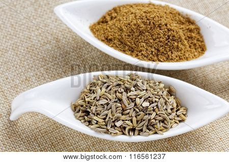 Fennel powder and seeds on texture background
