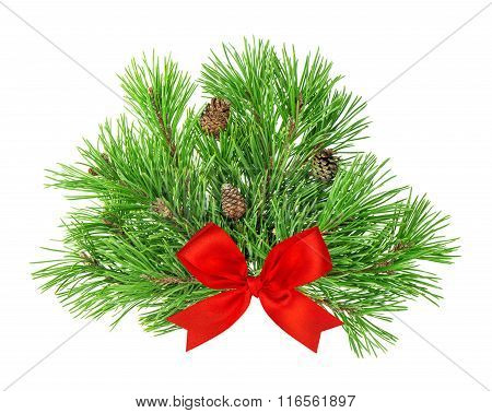 Pine Tree Branches With Cones And Red Ribbon Bow Decoration