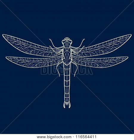 Vector illustration of decorative dragonfly. Abstract design
