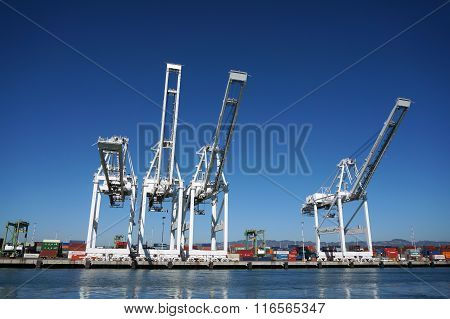 Row Of Cargo Cranes Tower Over Shoreline In Oakland Harbor