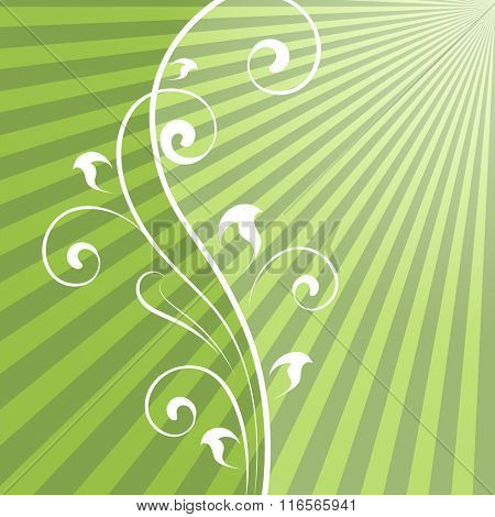 Abstract green rays background with vertical floral dividing element.