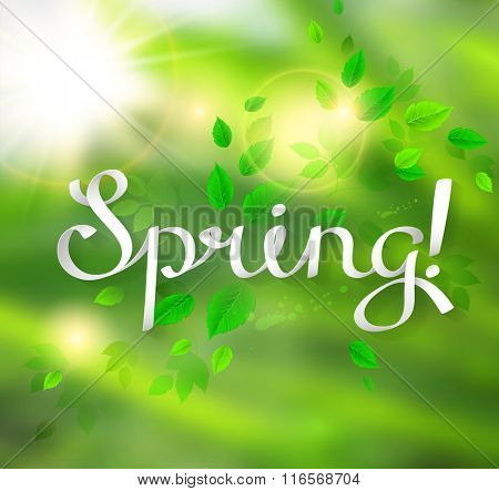 written word Spring. Season background with fresh green leaves
