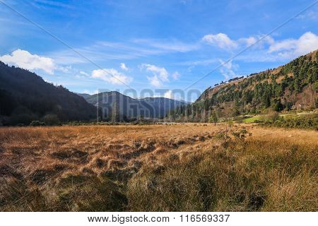 Lower Lake Valley On A Sunny Winter Day In Glendalough