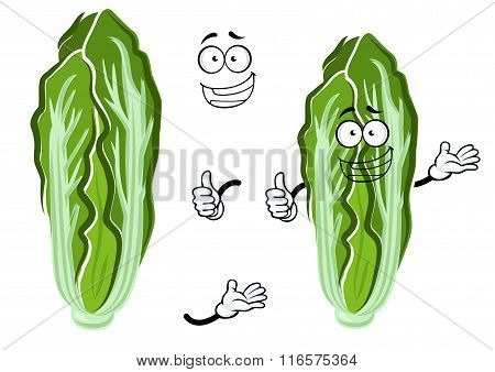 Cartoon happy chinese cabbage vegetable
