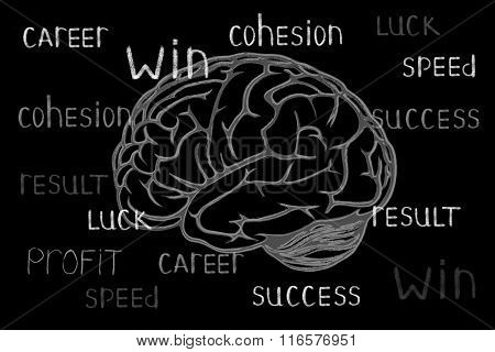 Drawn chalk brain on the black board