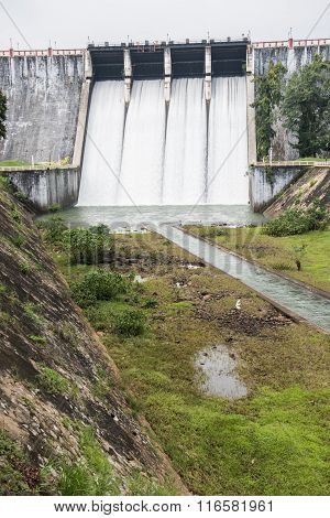 Open water Gates in Neyyar Dam