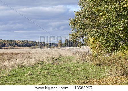Farmland during the autumn, fall.