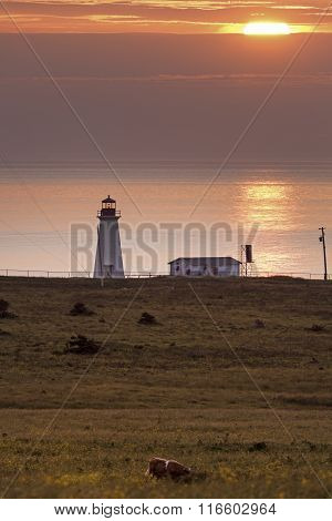 Enragée Point Lighthouse - Nova Scotia, Canada