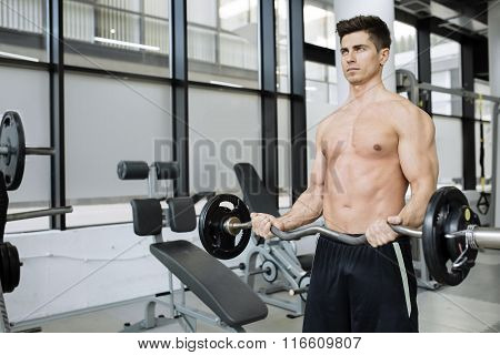Muscular Man Bodybuilding In Gym
