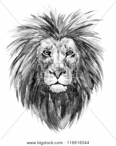 Watercolor raster lion