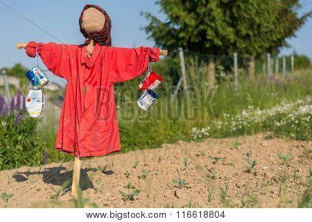 Funny Scarecrow On Farmland