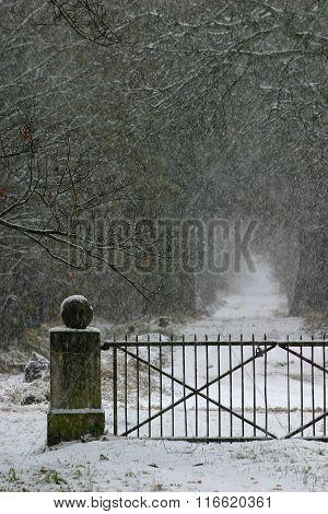 Snowy alley