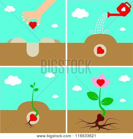 Growing Heart Growing Love