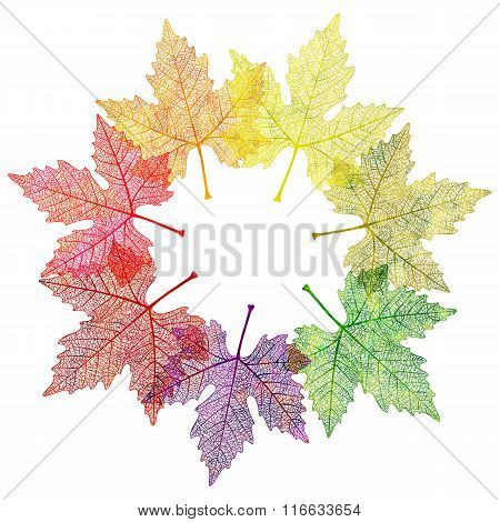 Leaf abstract background. Vector illustration, EPS10.