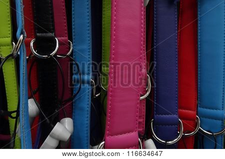 Colorful leather belts with metal clasp closeup