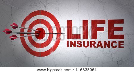 Insurance concept: target and Life Insurance on wall background
