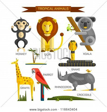 Tropical animals vector set in flat style design. Jungle birds, mammals and predators. Zoo cartoon i
