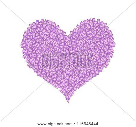 Purple Lilac or Syringa Vulgaris in A Heart Shape