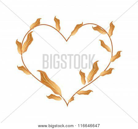 Beautiful Dried Leaves In A Beautiful Heart