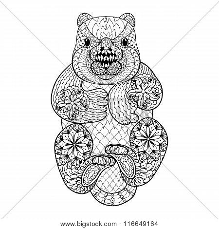 Hand drawn tribal Wombat, animal totem for adult Coloring Page i