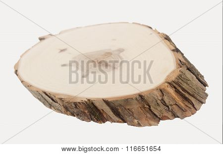 Wood Slice In Perspective