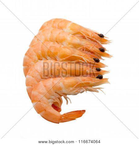 Boiled Shrimps Isolated On White Background
