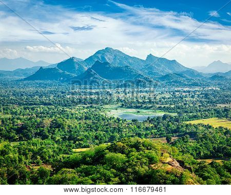 Sri Lankan landscape - view form Sigiriya rock, Sri Lanka,