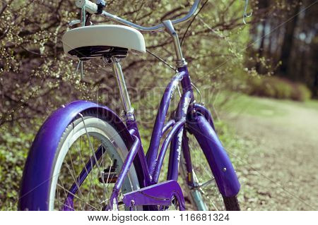 Detail Of Bycicle On A Springtime Road
