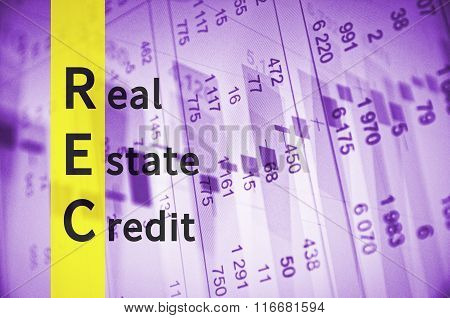 Real Estate Credit