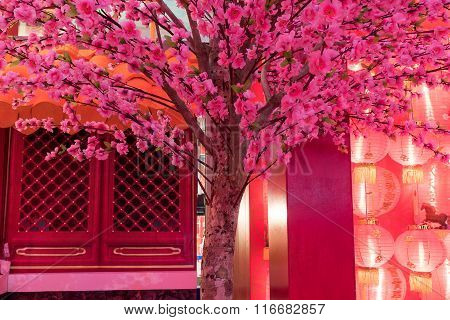 Pink Chinese Plum Flower With Red Light Chinese New Year Festival