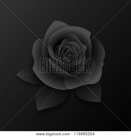 Realistic rose and leaves