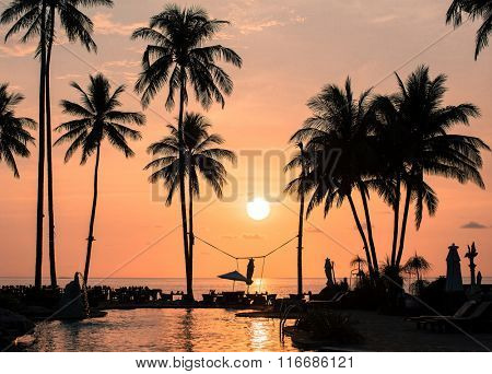 Amazing sunset on the palm trees tropical coast.