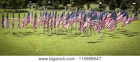 A group of American flags waving in the wind on a green lawn of grass.