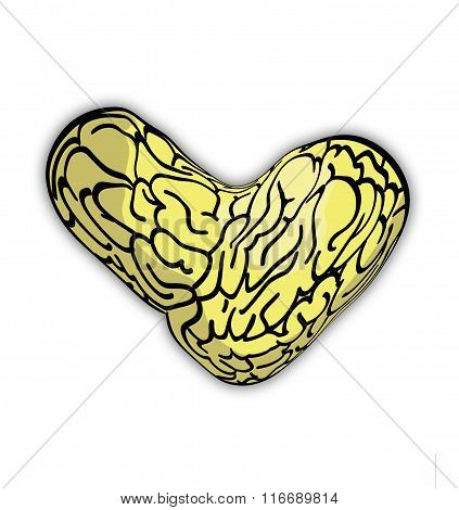 Heart shaped brain drawing