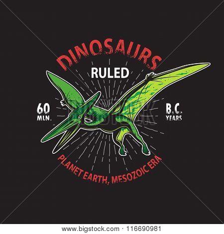 Dinosaur t-shirt print.