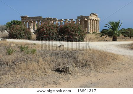 Archaeological area of Selinunte in Sicily