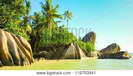 Sunlit Scene National Park