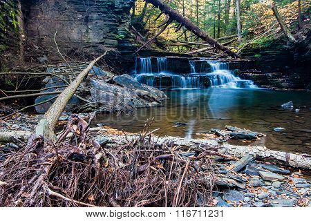 Waterfall In Autumn On A Small Stream Near Ithaca, Ny