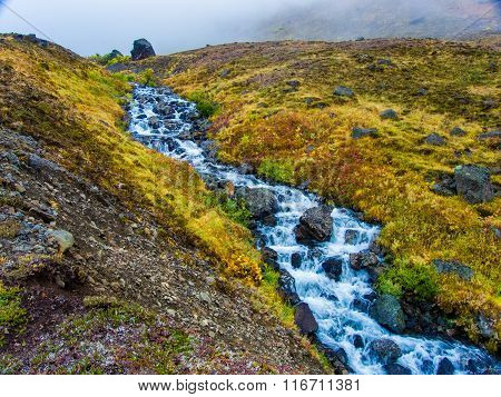 Corkscrew Creek In The Clearwater Mountains