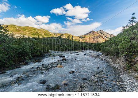 Glacial Stream In The Alaska Range