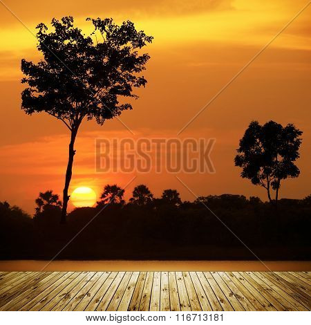 Twin Tree Silhouette Sunset With Wooden Board.