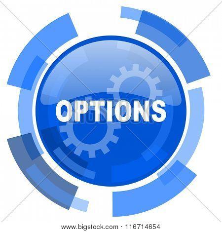 options blue glossy circle modern web icon