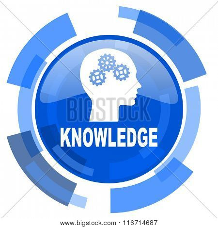 knowledge blue glossy circle modern web icon