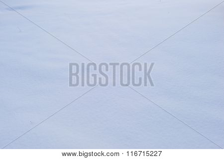 Frosty Winter Weather Snow White Background Land Cover