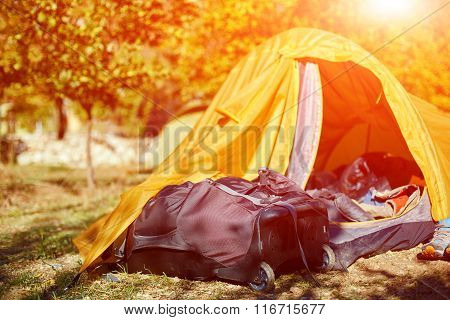 tents in the camping
