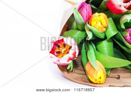 the bouquet of tulips is wrapped in a paper isolated on a white background