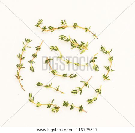 Thyme Branches Are Arranged On A Marble Tile Floor To Prepare For The Spicy Food.