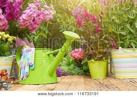 Gardening tools on the terrace in the garden