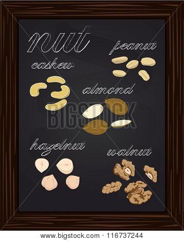 Sketches Walnuts, Almonds, Cashews, Peanuts, Hazelnuts,