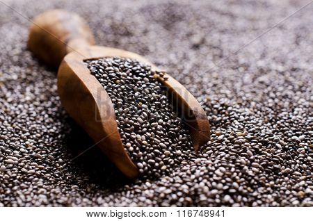 Background Chia Seeds